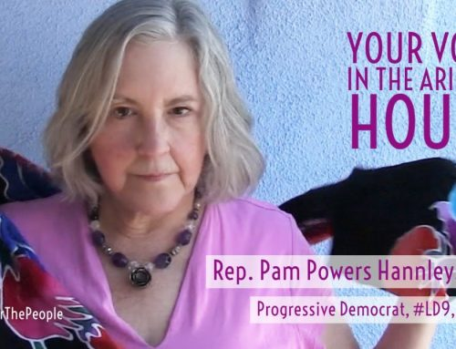 WATCH: Progressive Pam Powers Hannley Hits the Hot Issues