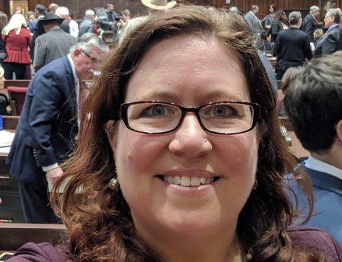Melinda Iyer Targets Republican Zombie Bills to Kill