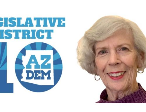 LD10 Chair Diane Nevill: How to Organize to Elect Democrats